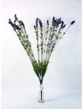 BUSH LAVANDA CM 80 IN PLASTICA